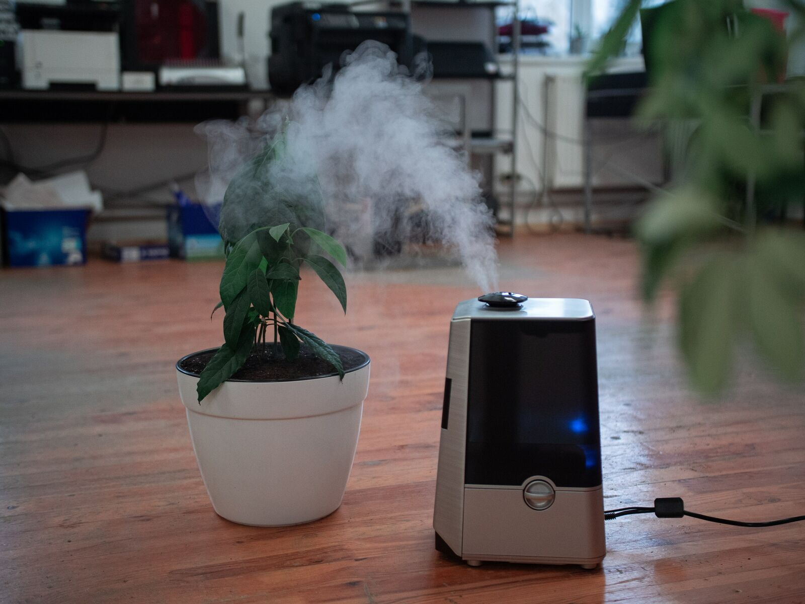 small home humidifier on floor with plants