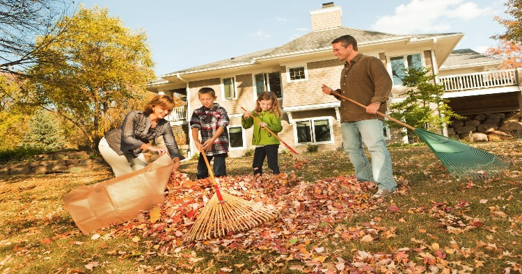 5 fall home maintenance to dos