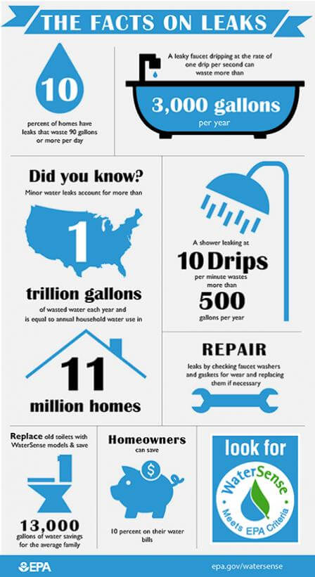 Infographic Facts on Leaks