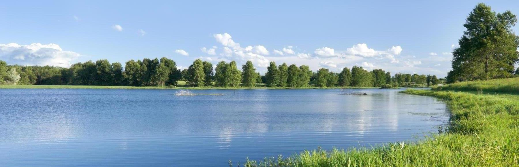 Landscape scene of a lake surrounded by trees