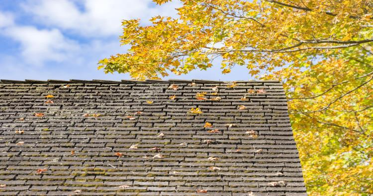 Extending the life of your roof in 3 easy steps