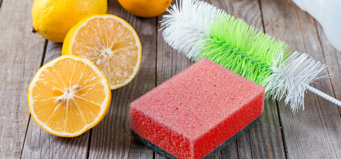 Cleaning sponge with lemons