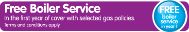FREE Annual Boiler Service in year 1