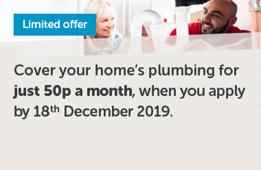 Limited offer plumbing cover